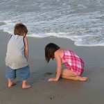 A Day at the Beach - by Hornbaker Chelsi, U.S. Fish and Wildlife Service