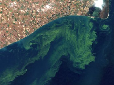 $50 million cut for Great Lakes cleanup in Obama 2016 budget riles healthy waters group