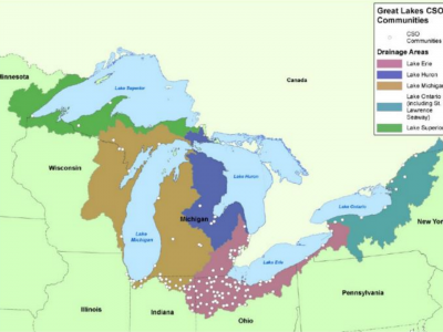 Green vs. Gray: How Can Trees Clean up the Great Lakes?