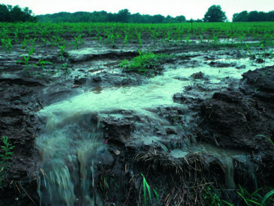 Agriculture and Algae: Is the GLRI making a difference?