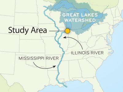 Asian Carp & the Great Lakes