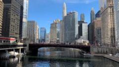 Number of fish types in Chicago waters up to nearly 60 from about 10