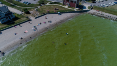 Toxic Algae 2020: Moderate bloom forecasted for Lake Erie