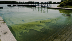 Climate change threatens drinking water quality across the Great Lakes