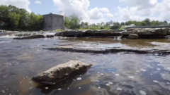When a Dam Comes Down: Removal of dams allows fish passage and habitat restoration