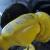 Ethanol-E85pump