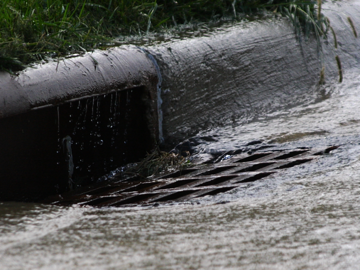 """Stormwater is one of the biggest water quality issues facing Michigan"""
