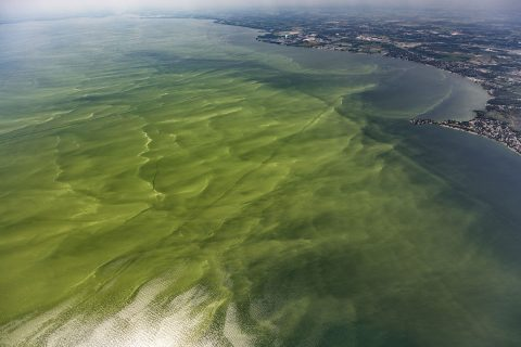Photo by Aerial Associates Photography, Inc. (Zachary Haslick) via NOAA cc 2.0