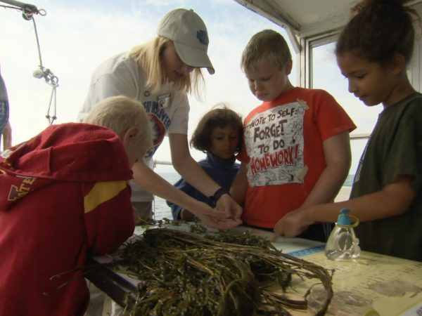 Summer Discovery Cruise: Inspiring the Next Stewards of the Great Lakes
