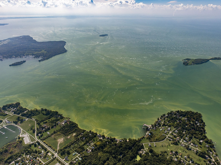 Peak Lake Erie algae season keeps scientists, politicians and lawyers busy