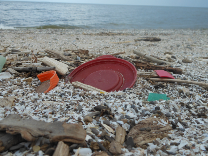 Great Lakes Beach Trash