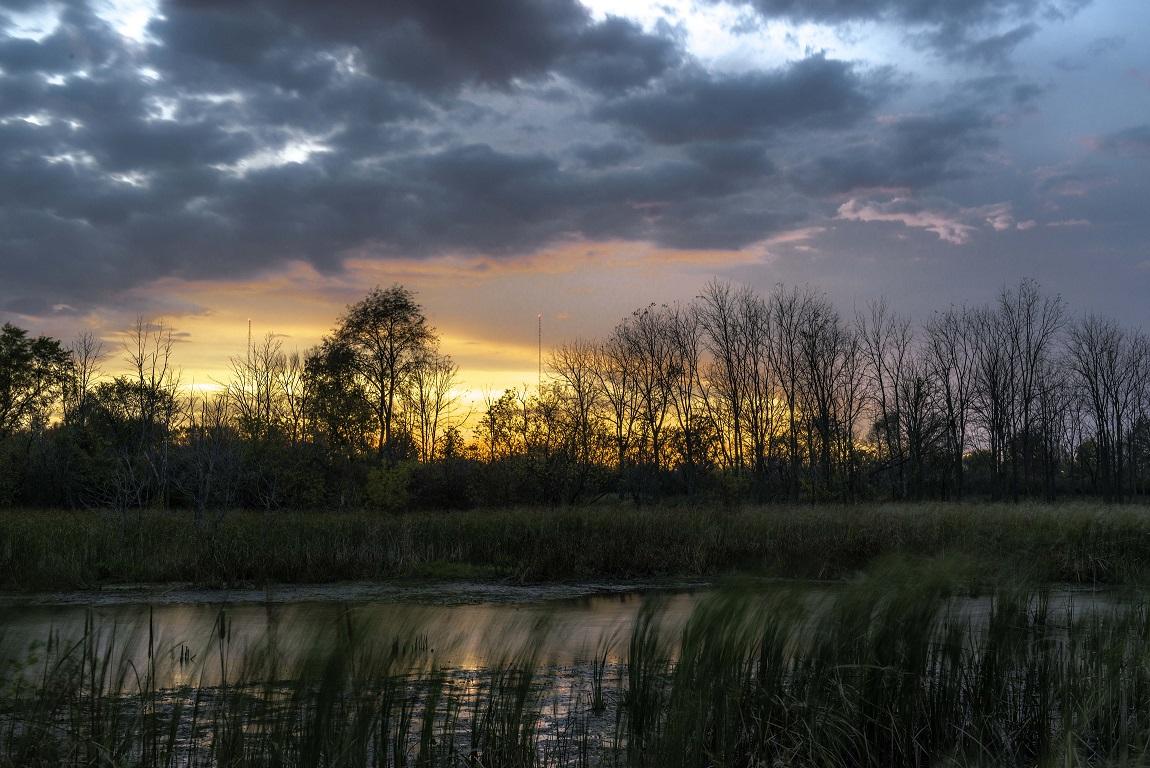 Photo by Michael Sisinger via John Hartig