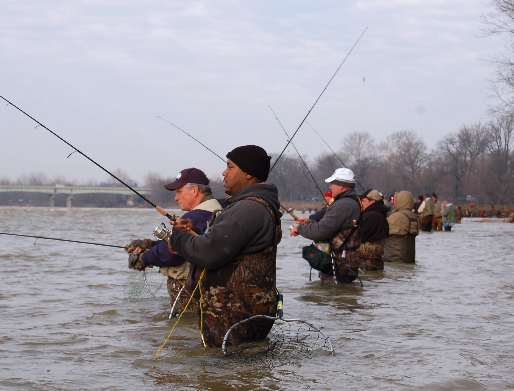 2019 Spring Lake Erie Walleye Fishing Reports - Coe Vanna