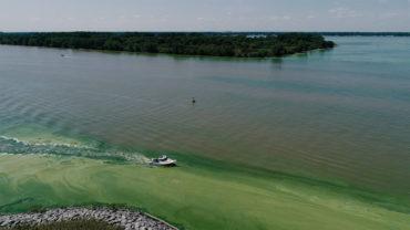 Western Lake Erie aerial shot