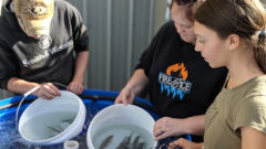 Multi-million dollar grant funds study of Great Lakes aquaculture