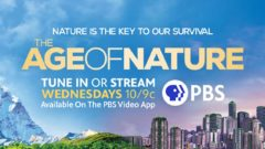 The Age of Nature: Series finale ends with hope
