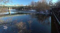 PFAS News Roundup: Huron River contamination levels drop, New York PFAS cleanup could be delayed