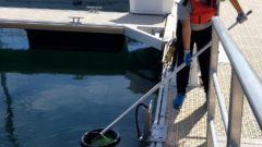 Plastic Trap: New project pulls plastics out of the lakes, one floating garbage can at a time