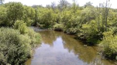 Program to study Clinton River to improve water quality