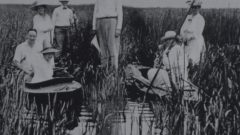 Winous Point: Conservation and research plays key role in history of one of the oldest hunting clubs