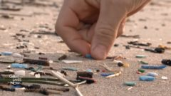 Plastic Impact: Canada launches multi-year study of microplastics in water and soil