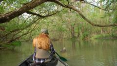 Habitat Focus: To help the birds, nonprofit organization looks to Great Lakes habitats