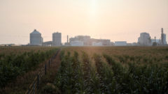 Carbon-capture pipelines offer climate aid; activists wary