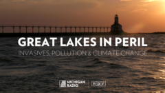 Great Lakes in Peril: Invasives, pollution, climate change